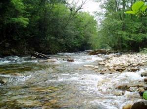 Fundación Naturaleza y Hombre rio-agueda
