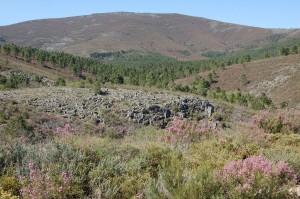 Fundación naturaleza y hombre amenazas al medio natural Oeste Ibérico