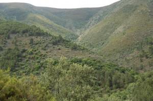 SierraGata_ReservaAdenex2
