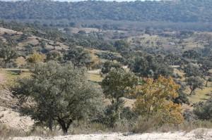 comarcas1-1024x680