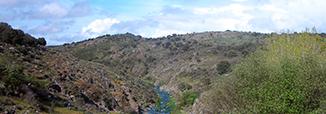 oeste-iberico