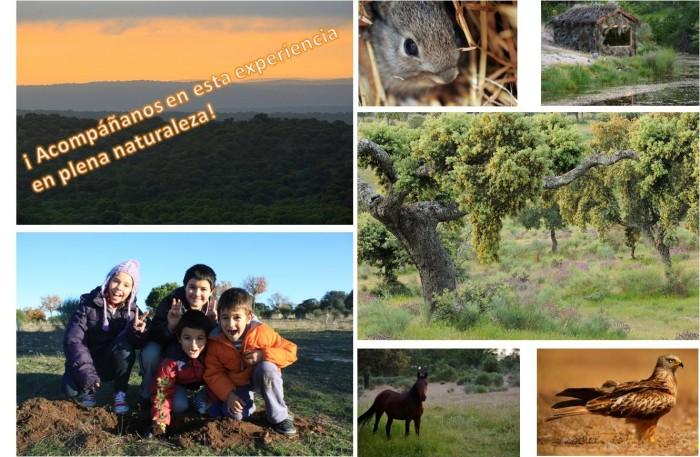 Noticias proyecto life nature reserva campanarios de for Noticias naturaleza