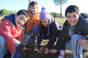 educacion-ambiental-5