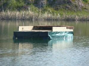 plataforma-flotante-instalada-como-posadero-para-aves