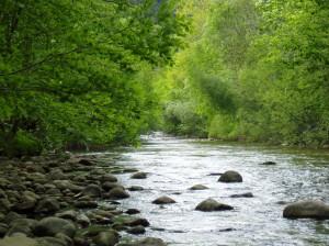 Río Aguanaz