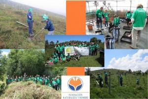 Voluntariado de la FNYH / Plan PROVOCA