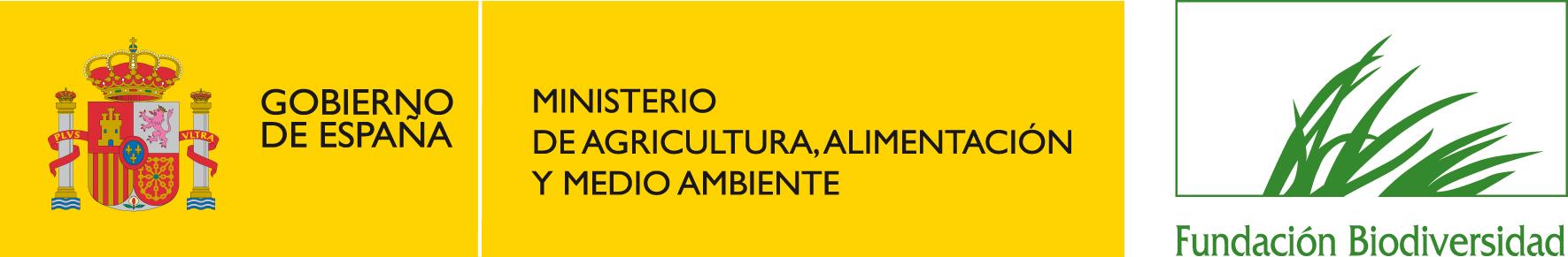 logo color FB