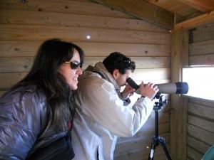 taller de observación de aves y plantacion en alday 18-12-2010 008