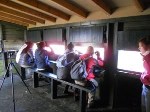 taller de observación de aves y plantacion en alday 18-12-2010 011