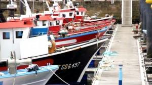 Pesqueros tradicionales amarrados en el puerto. Imagen del documental.