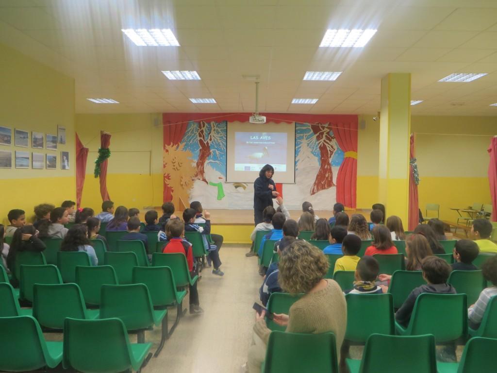 Tallere de Aves en el Colegio Magallanes