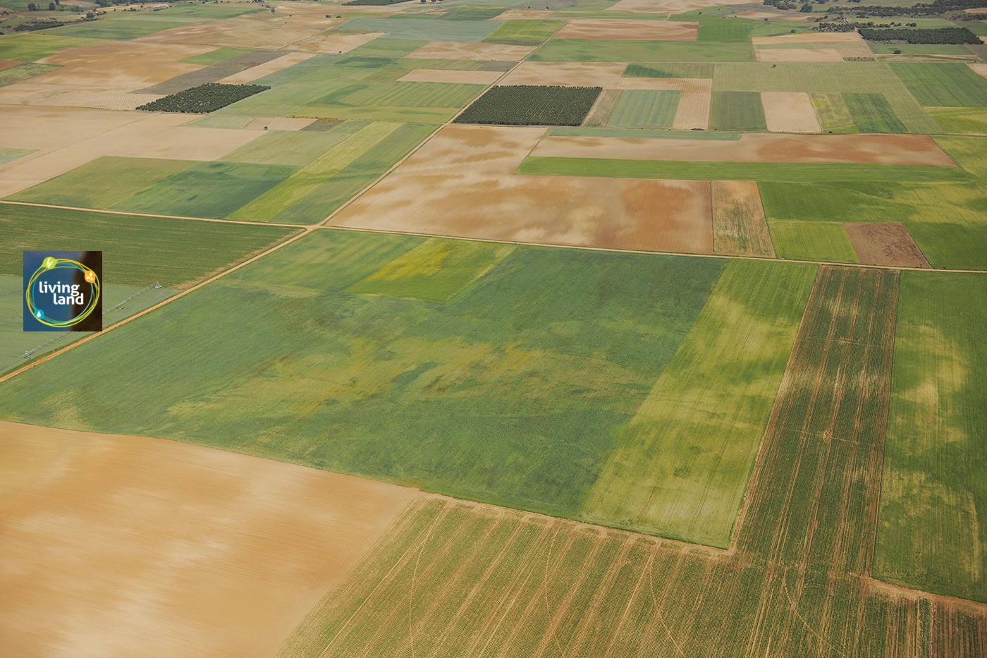 living-land