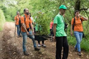 Monitores y voluntarios de la Fundación llevan plantas para reforestar en los Pozos de Valcaba.