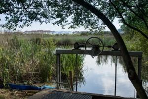 Trabajos de desagüe de la Laguna Dulce de la Marisma de Alday para combatir la Ludwigia Peploides