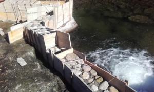 Rebaje o vertedero que hará de llamada para los peces que usarán el estanque intermedio en su ascenso del río