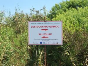 Carteles informativos del banco de pruebas para la eliminación de la chilca en la Ría de Cubas