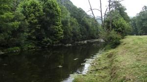 Río Miera La Regata, ZEC Río Miera