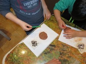 Actividad en aula, identificando huellas