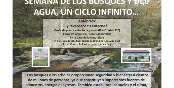 Celebremos los Días Internacionales de Bosques y del Agua, 21 y 22 de marzo, poniendo verde tu entorno