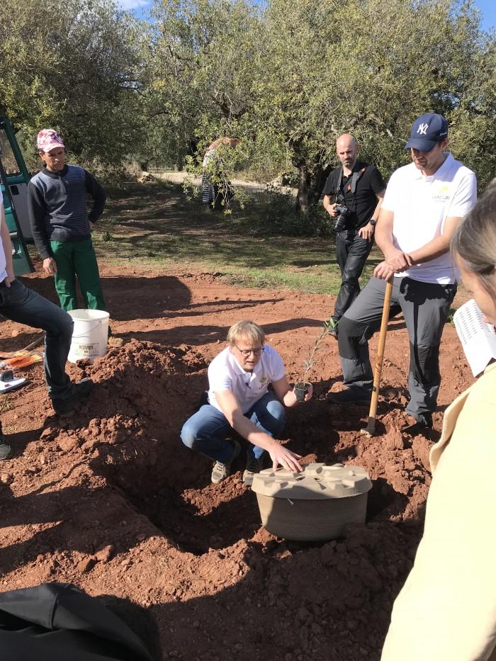 Asistiendo a la plantación de árboles con nuevas tecnologías de cocoon