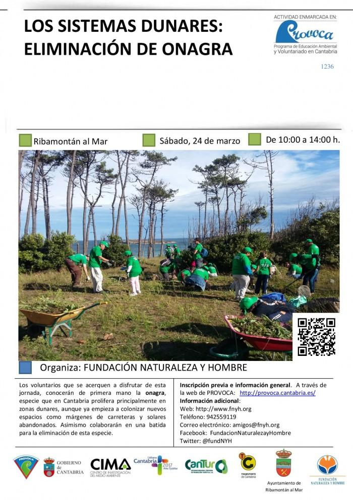 Los sistemas dunares: eliminación de onagra. Actividad PROVOCA 23 marzo 2018