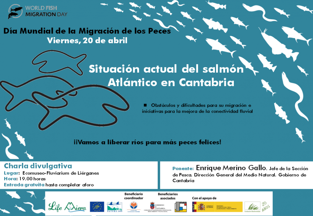 """Charla viernes 20 abril """"Situación actual del salmón atlántico en Cantabria"""" a cargo de Enrique Merino Gallo del Gob.Cantabria en ecomuseo Fluviarium"""
