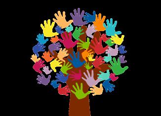 Servicio de Voluntariado Europeo SVE, programa Erasmus+