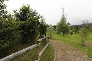 Un recorrido de la reserva entre la vegetación autóctona