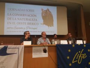 Gerardo Moreno, Juan José Pérez, David Rodríguez y Fernando David Nájera.