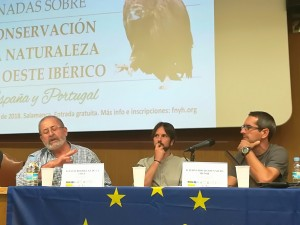 Juan José Pérez, David Rodríguez y Fernando David Nájera.