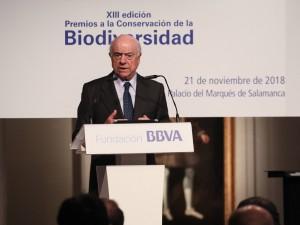 Francisco González, director de Fundación BBVA.