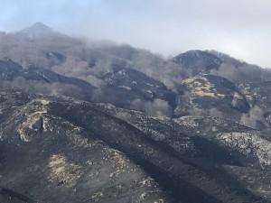 Incendios en el Hayedo de La Zamina. Foto de FNYH.