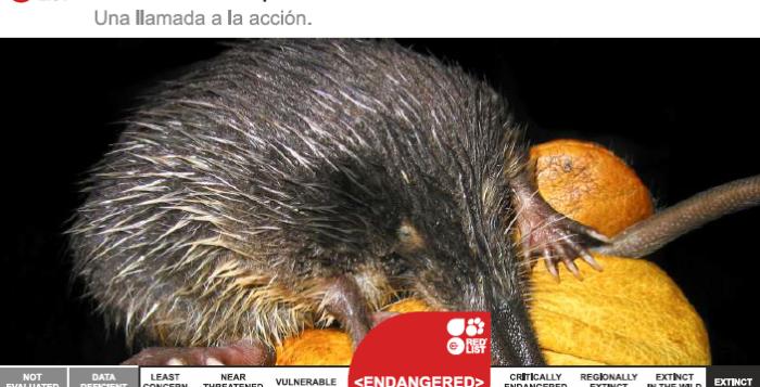Portada del Análisis de las Especies en Lista Roja de la UICN en España