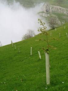 anillo verde2 montaña pasiega