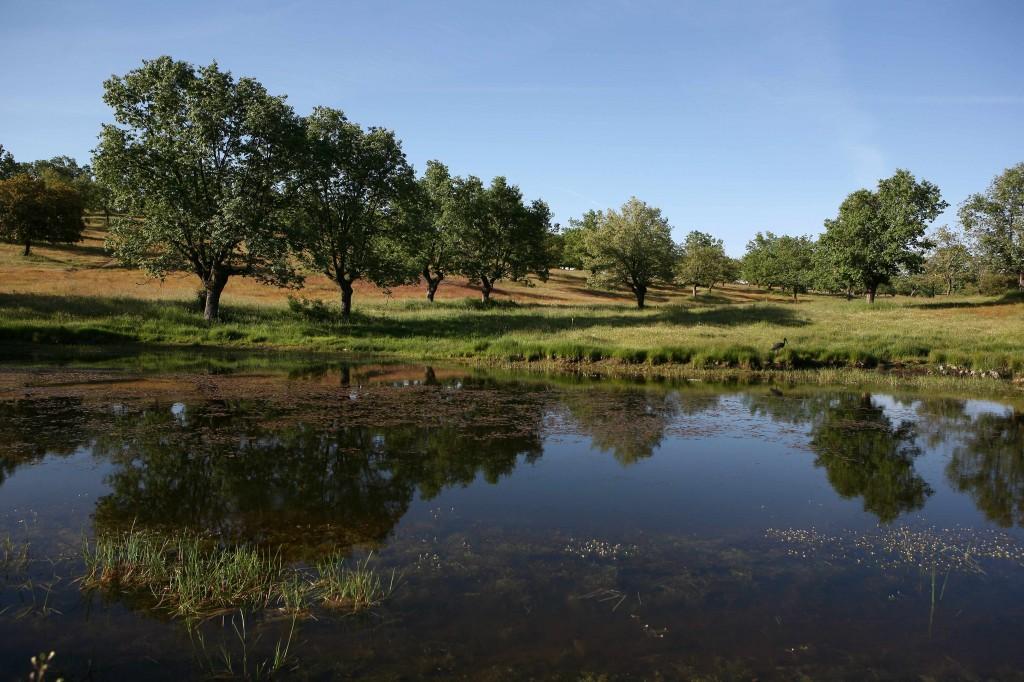 Humedales en España Fundación Naturaleza y Hombre
