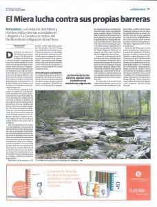 22-04-2018 Diario Montañes: El Miera lucha contra sus barreras