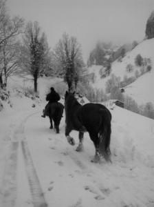 A caballo en la nieve