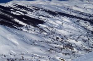 Fincas nevadas Alto Miera