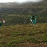 Desbroce en LIC Montes de Valnera