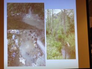 La contaminación de las aguas es determinante en la distribución