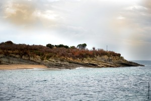Isla de Santa Marina con flora afectada por el tratamiento