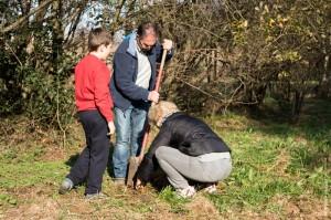 Colaborando juntos para plantar árboles.