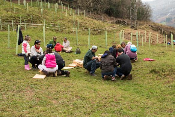 Después de la plantación de árboles, los participantes en grupitos construyendo cajas para erizos.