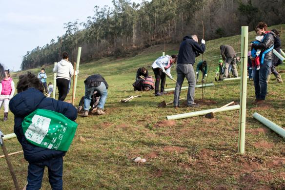Los participantes durante la actividad de plantación de los diferentes árboles.
