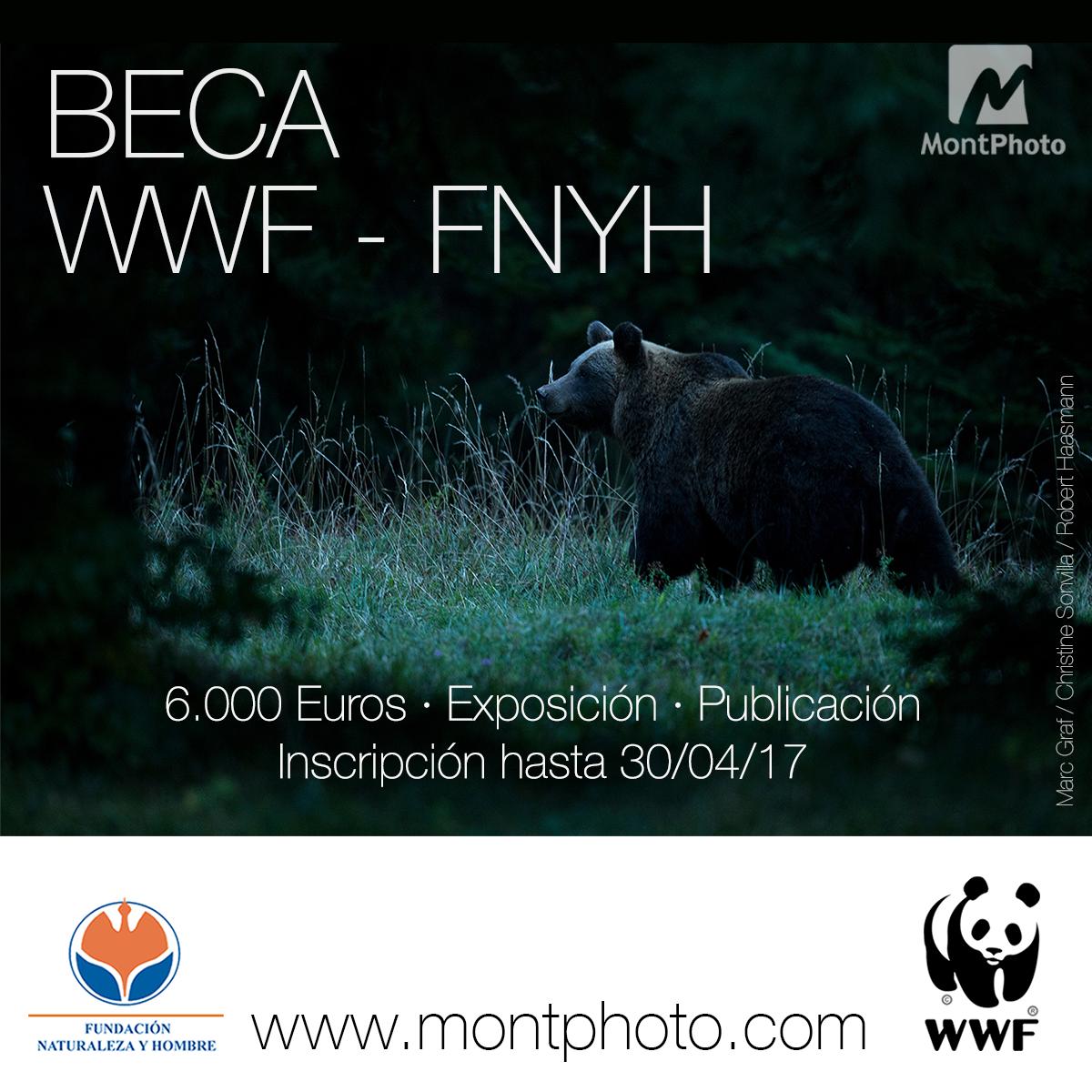 Beca Concurso Fotográfico Montphoto 2017