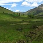 """La Turbera de Bernallán, que forma parte del LIFE """"Conservación de la biodiversidad en el río Miera""""."""