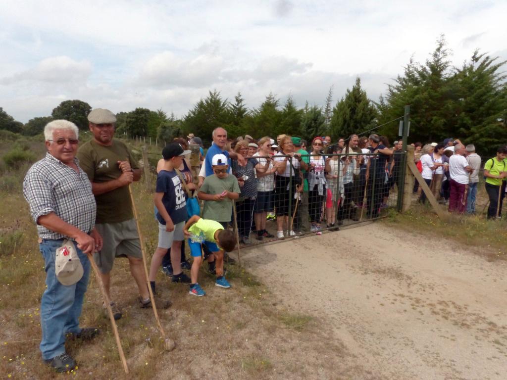 Una parada explicativa sobre las acciones de conservación en el término municipal de Nave de Haver