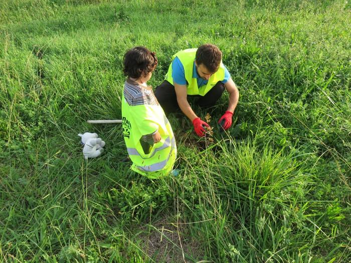 Voluntariado Ambiental en Pozón de la Yesera_Anillo Verde Bahia de Santander