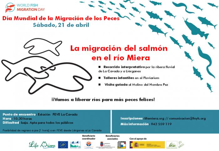 Ruta guiada, talleres y visita del molino fluvial de Liérganes para celebrar Día Mundial Migración Peces 2018