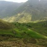 Panorámica de Bernallán y terrenos custodiados